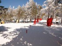 Atracciones para peques en la nieve