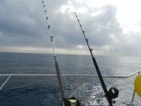 在塔拉戈纳钓鱼