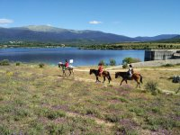 Horseback Ride in San Ildefonso Farm, 2h30m