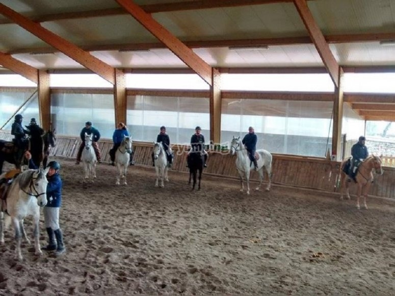In the indoor riding arena