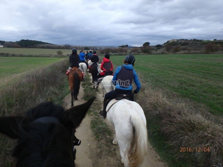 A beautiful experience on horseback