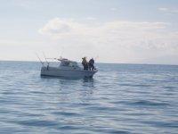 在塔拉戈纳划船标志坎布里尔斯宪章游船