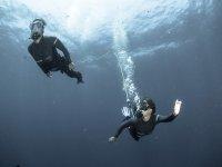 彼得在帕尔马,儿童水下游览