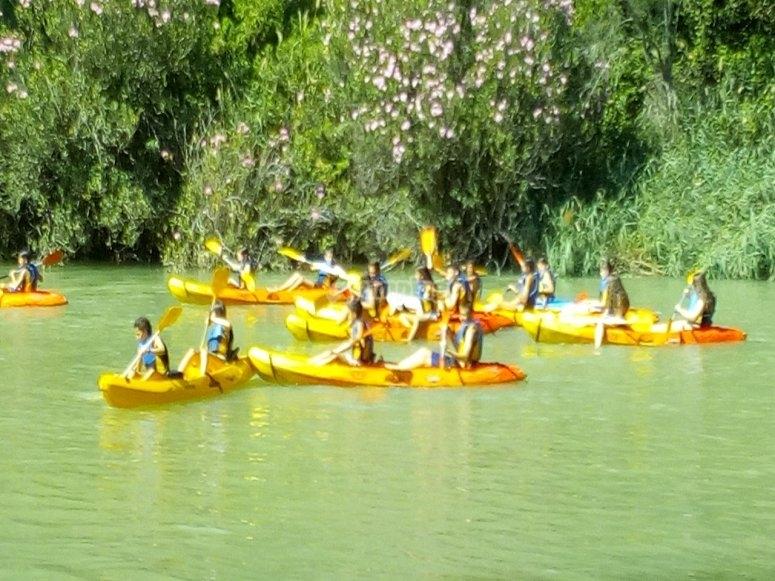 Excursión en kayak río Cabriel