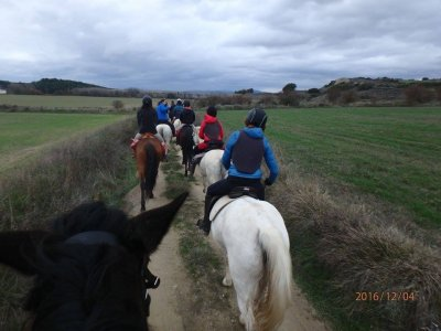 Horseriding in Liebana or Monastery of Leyre
