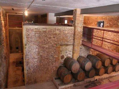 葡萄酒参观Fontanars的酿酒厂