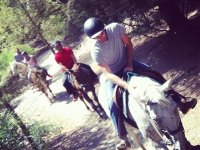 Horseback Tour in Collserola, 2 Hours
