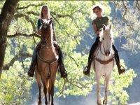 Oferta Ruta a caballo en Collserola. 2 h.