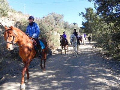 Ruta a caballo con butifarrada en Collserola, 2 h