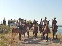 Oferta Ruta a caballo con butifarrada en Collserola, 2 h