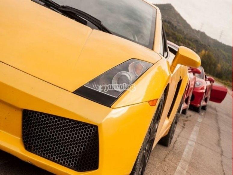 Lamborghini in Kotarr