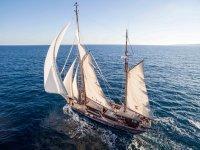 老马洛奎因帆船