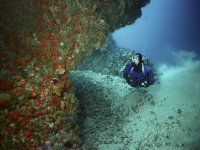 Scuba diving in Seville