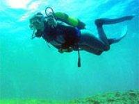 Comienza la inmersion