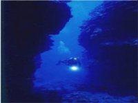 Touring the deep sea