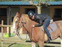 1h horse ride tour in Serralada Litoral