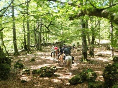 2 horas de ruta a caballo desde Bikuña