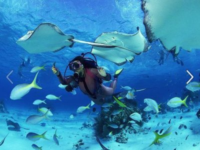 10 dives voucher in Tenerife