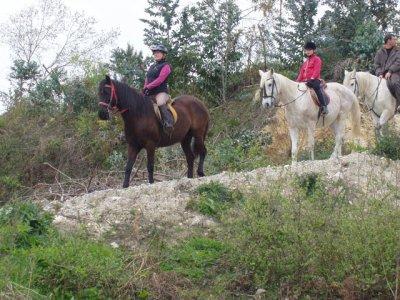 Passeggiata a cavallo attraverso Monte Santa Ana, 3 ore