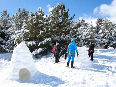 Aprende a construir un iglú en el Valle de Tena