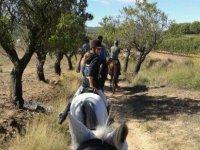 Oferta Ruta a caballo por zona de vi�edos Alt Pened�s 1h