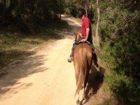 Oferta Ruta a caballo zona de monta�a Ol�rdola 2h