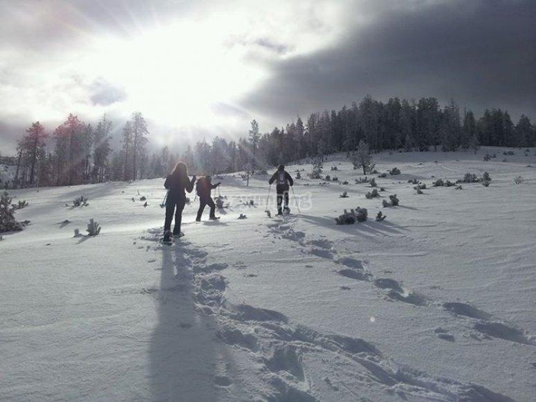 Raquetas de nieve Garu Roig