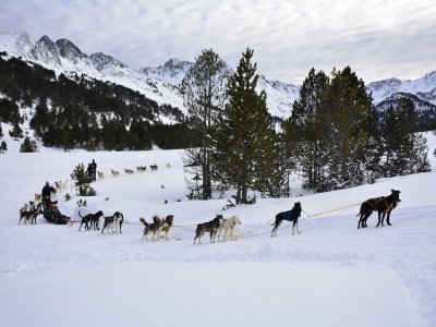 Double dog sledding route 2km in Grandvalira