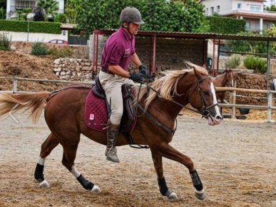 Pack of 4 lessons, Equitation baptism, 1 hour