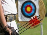 flechas y diana