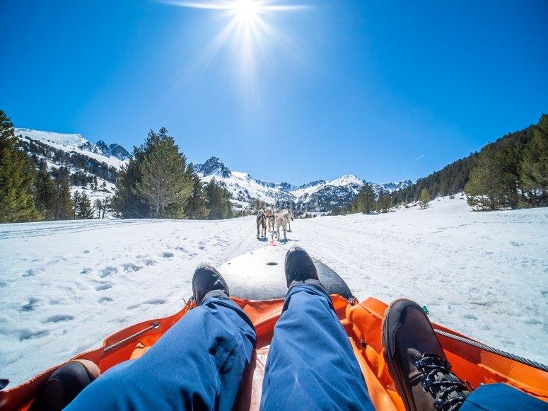 Vista desde el trineo de nieve