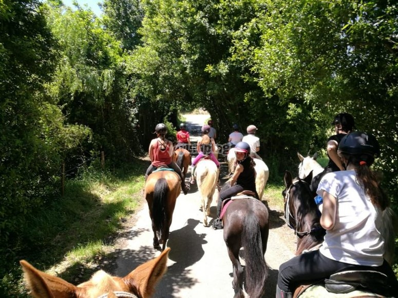 Horse riding route in nature reserve in Cantabira
