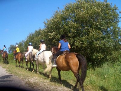 Horse riding tour Oyambre nature reserve 1 h 30 m