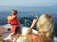 乘船观赏鲸鱼
