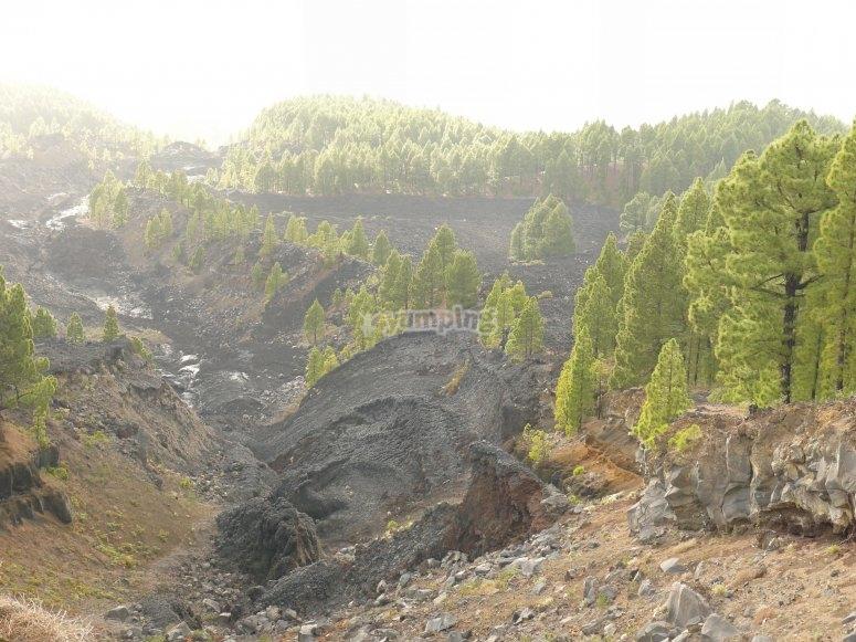 Vistas volcánicas