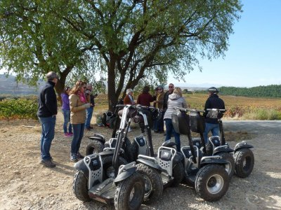 Segway ride in a vineyard + wine cellar visit
