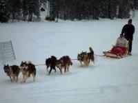 Aventura en la nieve con trineo