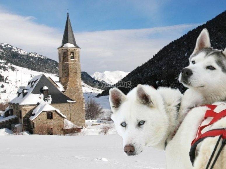 Descubre la belleza del invierno