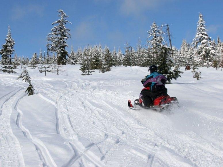 来试试雪地摩托车
