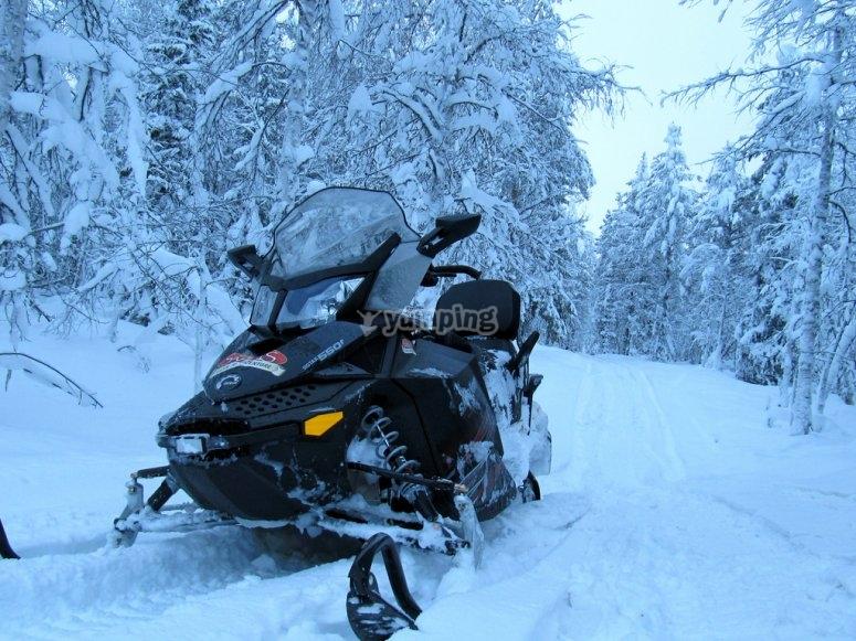 我们的单座雪地摩托