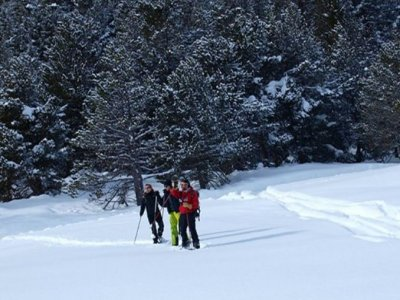 Roc Roi Raquetas de Nieve