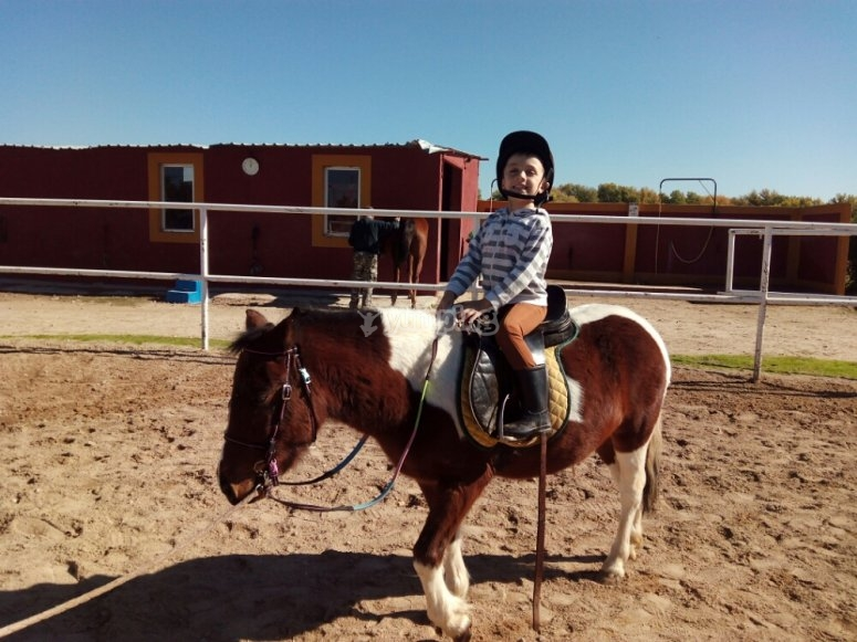 Come with your family to ride our horses!