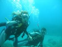 官方潜水课程