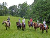 组在马背上绿色领域