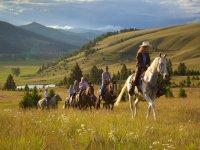 帽子路线排在马背上