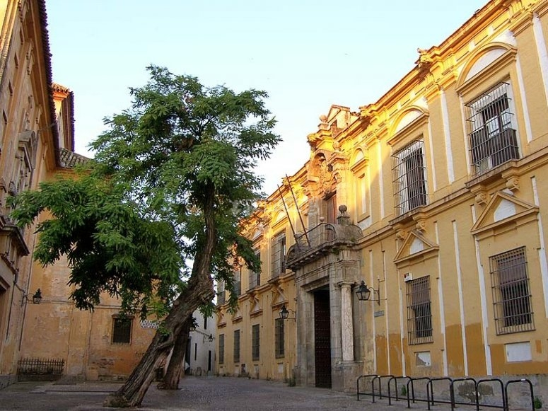Plaza del Cardenal Salazar