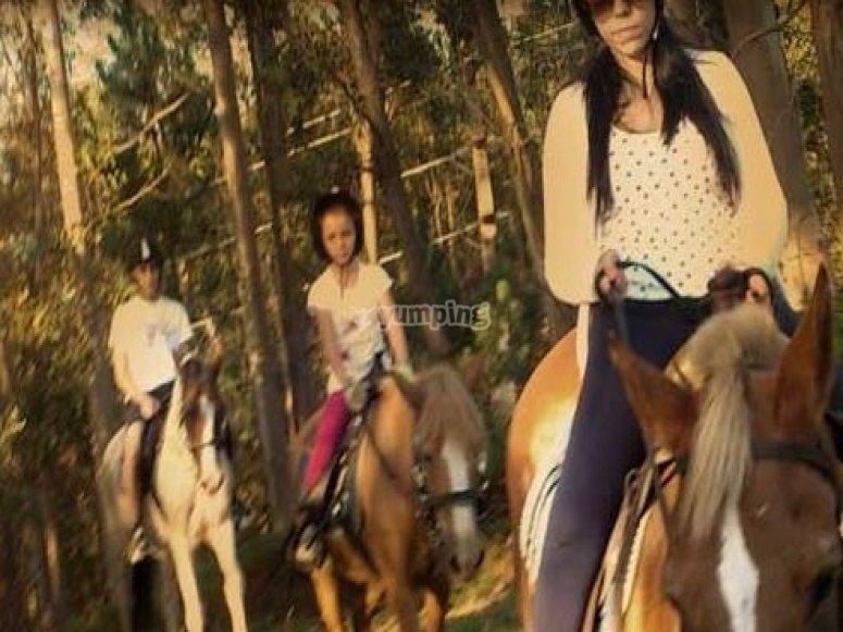 Paseo a caballo en Marin