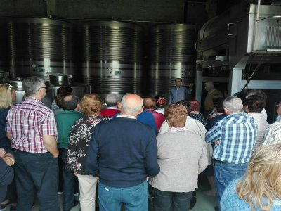 Winery tour with wine tasting in Rías Baixas