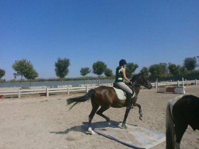 Horse riding lesson in Termens, 1 hour