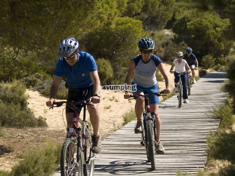 Ruta guiada en bici